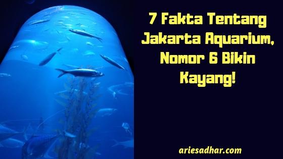 7 Fakta Tentang Jakarta Aquarium, Nomor 6 Bikin Kayang!.jpg