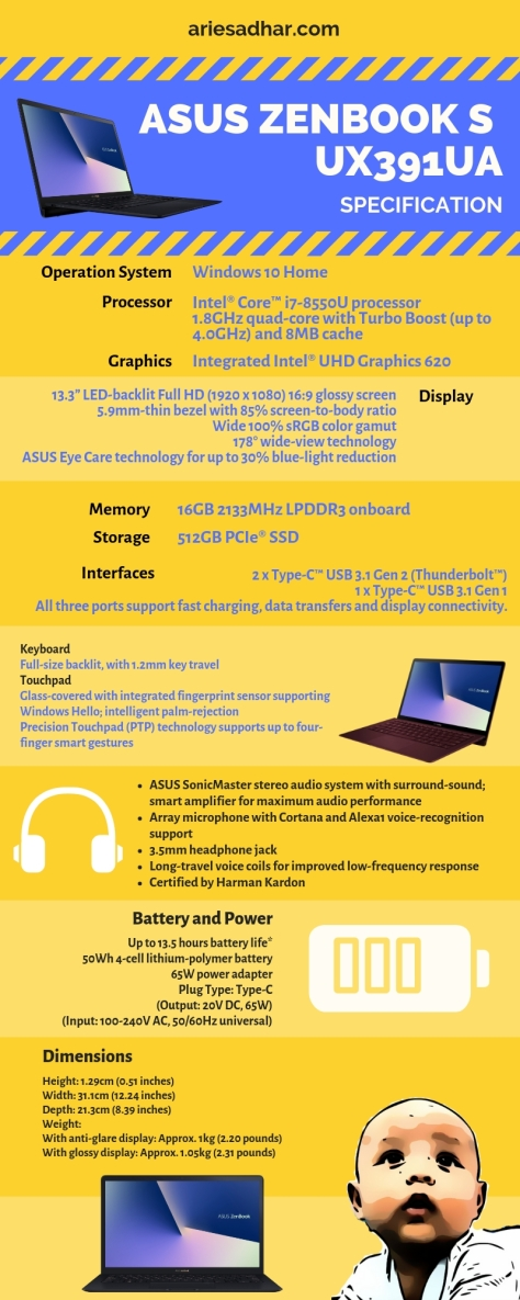 ASUS ZenBook S UX391UA.jpg