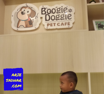 boogie doggie pet cafe