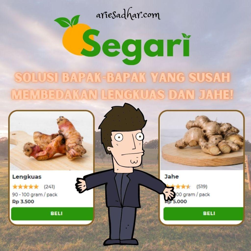 Segari